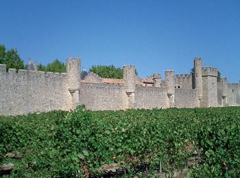 foto van Château de Grézan