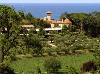foto van Villa Giulia