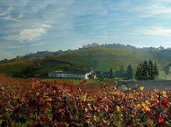 foto van Agriturismo Il Milin